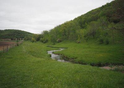 Spring Creeks of WI