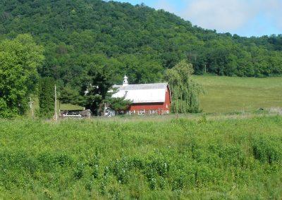Wonderful Farms in the Driftless
